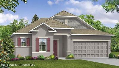 Weeki Wachee Single Family Home For Sale: 11400 Pelican Avenue