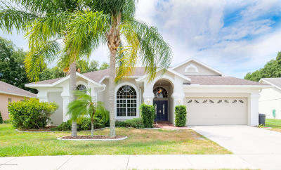 Hudson Single Family Home For Sale: 9104 Water Hazard Drive
