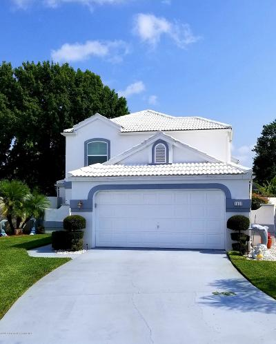 Spring Hill Single Family Home For Sale: 1031 La Bamba Court