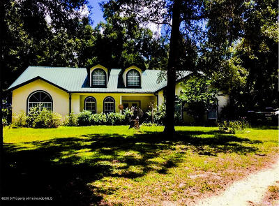 Brooksville Single Family Home For Sale: 25254 Appaloosa Trail