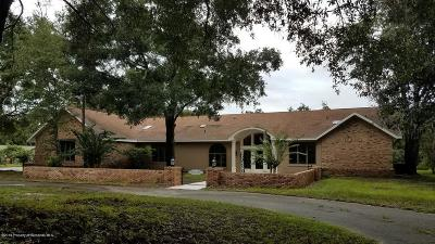 Brooksville Single Family Home For Sale: 14173 Centralia Road
