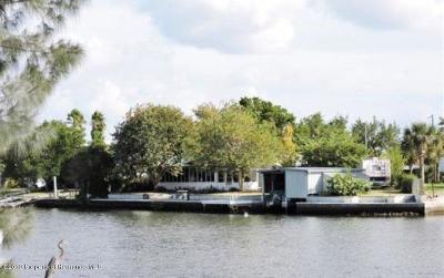Hernando Beach Single Family Home For Sale: 4540 Kingston Drive