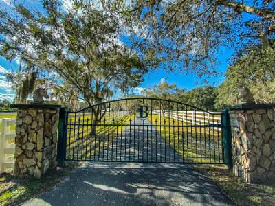 Brooksville Single Family Home For Sale: 21344 Race Horse Lane