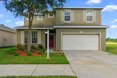 Brooksville Single Family Home For Sale: 14144 Holly Hammock Lane
