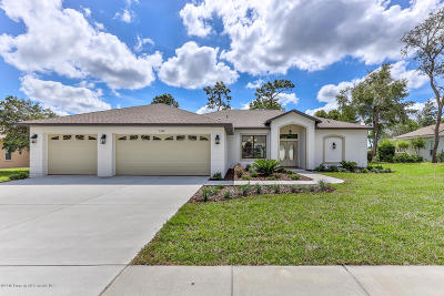 Brooksville Single Family Home For Sale: 5364 Championship Cup Lane