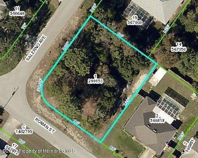 Spring Hill Residential Lots & Land For Sale: Salerno Avenue