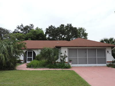 Spring Hill Single Family Home For Sale: 8024 Pagoda Drive