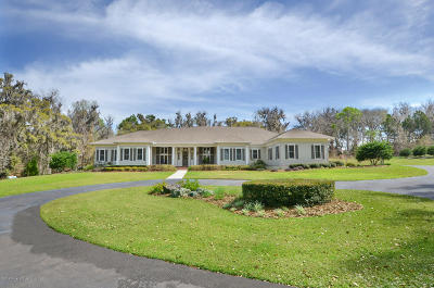 Brooksville Single Family Home For Sale: 16034 Snow Memorial Highway