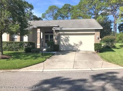 Spring Hill Single Family Home For Sale: 2367 Hidden Trail Drive