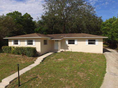 Spring Hill Single Family Home For Sale: 7288 Holiday Drive