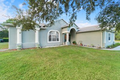 Weeki Wachee Single Family Home For Sale: 11075 Mountain Mockingbird Road