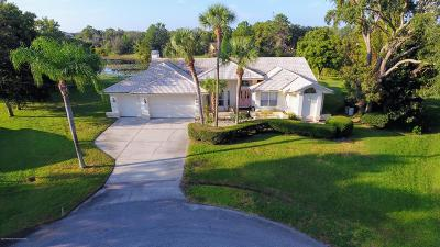 Spring Hill FL Single Family Home For Sale: $299,000