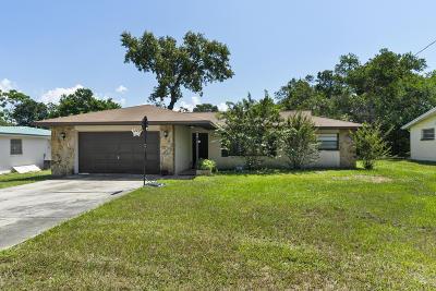Spring Hill Single Family Home For Sale: 3480 Thunderbird Avenue