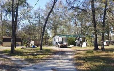 Fort White Single Family Home For Sale: 19174 SW Sr 47