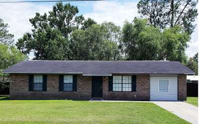 Lake City Single Family Home For Sale: 1784 SW Judy Glen