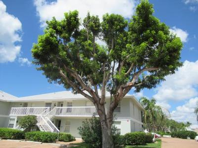 Marco Island Condo/Townhouse For Sale: 641 W Elkcam Cir #714