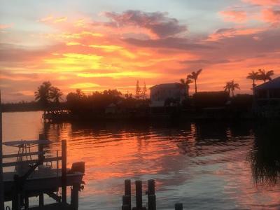 Naples Single Family Home For Sale: 125 Jamaica Dr