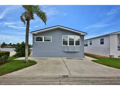 Naples Single Family Home For Sale: 523 Cheetah Dr #523