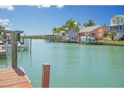 Naples Single Family Home For Sale: 156 Trinidad St