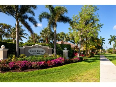 Naples Single Family Home For Sale: 8016 Tiger Lily Drive