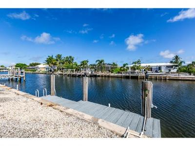 Marco Island Single Family Home For Sale: 1140 Martinique Ct #1