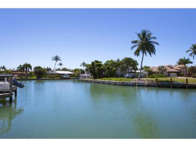 Residential Lots & Land For Sale: 643 Bimini #1