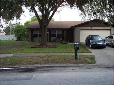 Hernando County, Hillsborough County, Pasco County, Pinellas County Single Family Home For Sale: 703 Climate Drive