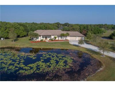 Sarasota Single Family Home For Sale: 7332 Palomino Trail