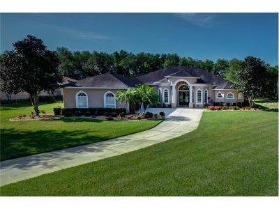 Bradenton Single Family Home For Sale: 15204 21st Avenue E
