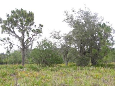 Myakka City Residential Lots & Land For Sale: 1021 406th Court E
