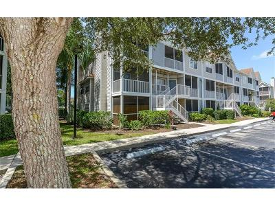 Condo For Sale: 850 S Tamiami Trail #704