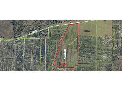 Parrish Residential Lots & Land For Sale: 44505 State Rd 62