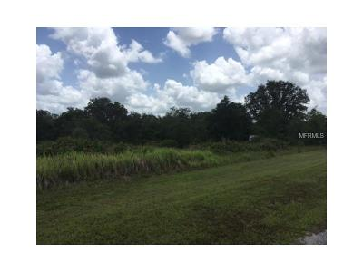 Myakka City Residential Lots & Land For Sale: 1205 E 406th Court