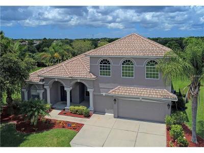 Bradenton Single Family Home For Sale: 232 Dove Trail