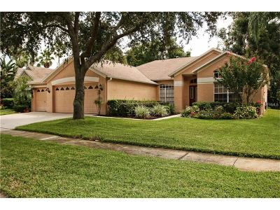 Valrico Single Family Home For Sale: 4404 Winding River Drive