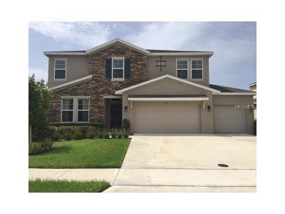 Eustis Single Family Home For Sale: 4051 Brookshire Circle