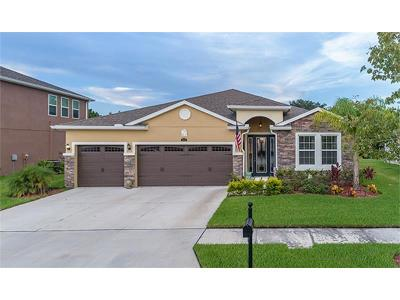Wesley Chapel Single Family Home For Sale: 5454 Suncatcher Drive