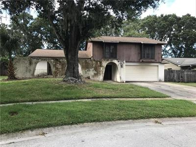 Hernando County, Hillsborough County, Pasco County, Pinellas County Single Family Home For Sale: 4939 Dewey Rose Court