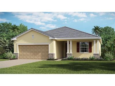Lakewood Ranch Single Family Home For Sale: 17007 Blue Ridge Place