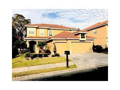 Dunedin Single Family Home For Sale: 3402 Clarine Way W