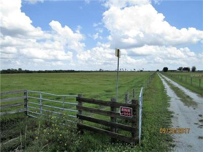 Myakka City Residential Lots & Land For Sale: 13935 Mj Road