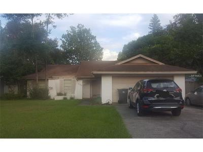 Valrico Single Family Home For Sale: 909 Black Knight Drive