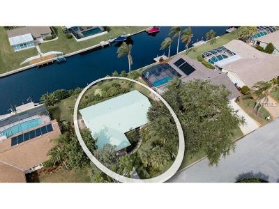 Bradenton Single Family Home For Sale: 5004 Coral Lake Drive
