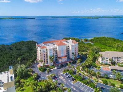 Palmetto Condo For Sale: 2715 Terra Ceia Bay Boulevard #206