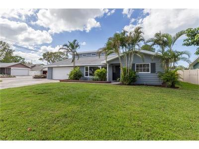 Hernando County, Hillsborough County, Pasco County, Pinellas County Single Family Home For Sale: 9800 135th Street