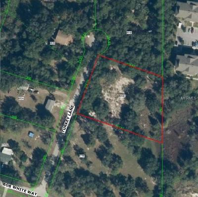New Port Richey Residential Lots & Land For Sale: 11748 Turkey Lane