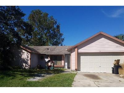 Kissimmee Single Family Home For Sale: 119 White Birch Drive