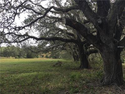 Myakka City Residential Lots & Land For Sale: 38355 Taylor Road