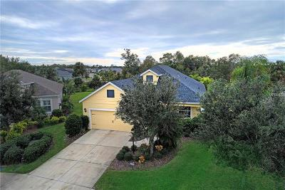 Parrish Single Family Home For Sale: 16805 Destrehen Court