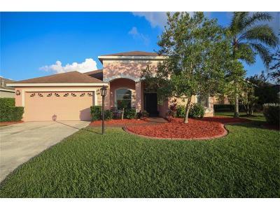 Bradenton Single Family Home For Sale: 515 Pecan Lane